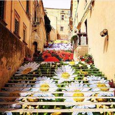 L'infiorata di Noto, Sicily, Italy 2016