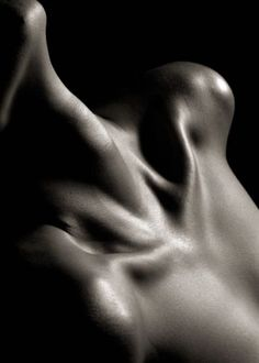 Bodyscape via Le Container
