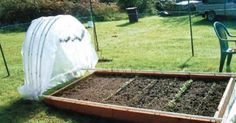 A PVC hoop house lets you grow raised bed greens in the snow.