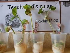 Jack & the Beanstalk...a Lima bean in a cup with wet cotton balls. Children color/glue a picture of Jack going up the beanstalk to a popsicle stick.