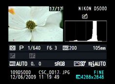 Learning How to Use Your Camera's Histogram from Nikon