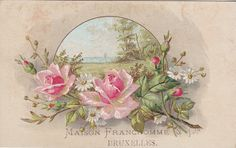 https://flic.kr/p/qk9AM2 | chrom maison franchomme & cie bruxelles -  flower spray below a circular spray - spray of pink roses and daisies - verger paris