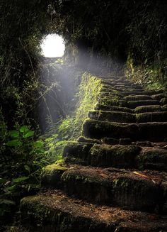 Stairway to Heaven. Passage on the Inca Trail leading to Machu Picchu, Peru. Beautiful World, Beautiful Places, Beautiful Stairs, Beautiful Beautiful, Beautiful Scenery, Amazing Places, Stairway To Heaven, Abandoned Places, Stairways