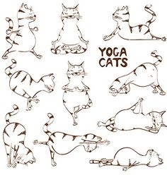 Funny sketch cat doing yoga position vector - Yoga - Katzen Yoga Positionen, Yoga Art, Yin Yoga, Yoga Meditation, Funny Sketches, Funny Drawings, Yoga Drawing, Cat Drawing, Yoga Kunst