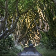 Looking to visit Game Of Thrones locations in Ireland? From The Kingsroad to the Iron Islands this Game Of Thrones locations Ireland itinerary has it all! Oh The Places You'll Go, Places To Travel, Places To Visit, Travel Stuff, Ireland Vacation, Ireland Travel, Dream Vacations, Vacation Spots, European Travel