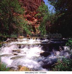 63 Best Beaver Falls Arizona images in 2018   Beaver falls