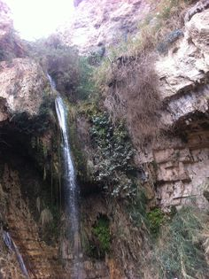 Ein gedi- @day tours to Masada and the Dead Sea, anathor way to spend your holiday in Israel, #king davids waterfall
