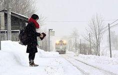 Japon: L'unique utilisatrice d'une gare sur le point de fermer harcelée par les curieux