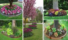 Building a flower beds around a tree can add a beautiful and neat appearance to your landscaping. This process is relatively simple and is well worth. - Flower Beds and Gardens Landscaping Around Trees, Landscaping With Rocks, Front Yard Landscaping, Landscaping Borders, Landscaping Ideas, Modern Landscaping, Flower Bed Designs, Shade Garden, Flower Beds