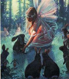 The Magic of Fairies