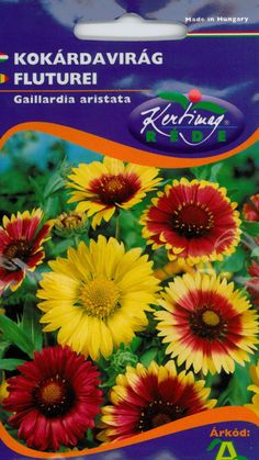 Évelő virágok : Kokárdavirág Art, Art Background, Kunst, Performing Arts, Art Education Resources, Artworks