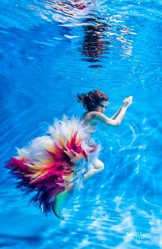underwater photography - Google Search (scheduled via http://www.tailwindapp.com?utm_source=pinterest&utm_medium=twpin&utm_content=post50366354&utm_campaign=scheduler_attribution)