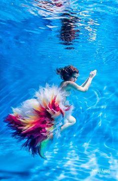 underwater photography - Google Search (scheduled via http://www.tailwindapp.com?utm_source=pinterest&utm_medium=twpin&utm_content=post50366354&utm_campaign=scheduler_attribution)