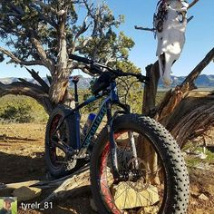 Cool pic from @tyrelr_81 -  Ride or die tryin'.....#fatbikes #fatboy #specializedbikes #philsworld #fatbikedotcom #fatbike_29plus_life #mountainbiker #specializedfatbike  #fatbike #mtb #specialized