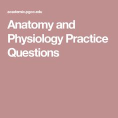 Anatomy and Physiology Practice Questions