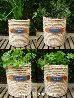 {DIY} Sisal wrapped coffeecans repurposed as planters (image via My House and Home)