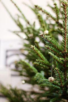 Varpunen Winter Holidays, Christmas Holidays, Merry Christmas, Xmas Tree, Christmas Tree Decorations, Beautiful Christmas, Beautiful Day, Green Christmas, Merry And Bright