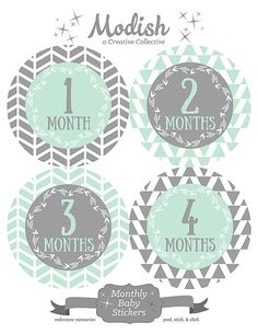 FREE GIFT Monthly Onesie Stickers for Gerber Onesies® by ModishCC