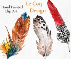 Feathers Watercolor Clipart: FEATHERS CLIP ART by LeCoqDesign