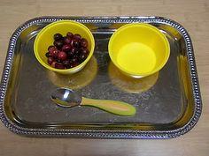 Montessori  Thanksgiving - Cranberry transfer activity