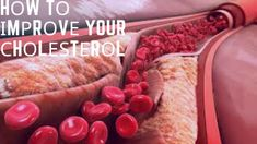 Hоw Tо Іmрrоvе Your Сhоlеѕtеrоl: Seven Big Myths DEBUNKED Cholesterol Levels, Lower Cholesterol, Stress Causes, Regular Exercise, Live Long, Improve Yourself, Healthy Living, Low Carb