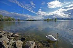 This is the Bodensee, or Lake Constance.