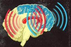 MIT neuroscientists found that brain waves originating from the striatum (red) and from the prefrontal cortex (blue) become synchronized when an animal learns to categorize different patterns of dots.