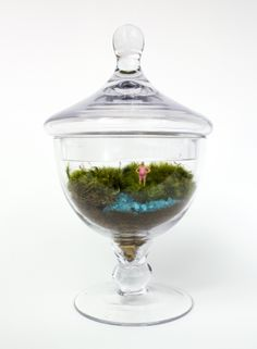 Out for a Swim — Moss Love Terrariums