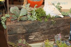 barnwood boxes to be filled with what you please!