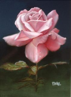 How to Paint Flowers like you mean it!