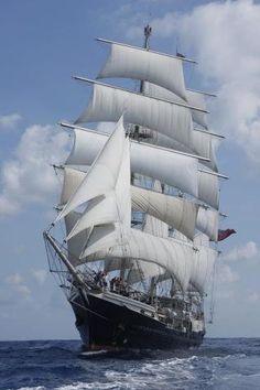 Tenacious #tenacious #tallship #sailing