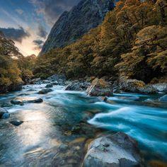 Short Walks » Destination Fiordland