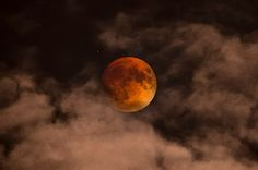 This and five other Supermoon photos are finalists in NASA's contest!  Which are your favorite? Did you take any awesome photos of this Moon?  http://go.nasa.gov/superbloodmoon-contest