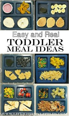 Easy {and Real} Toddler Meal Ideas Easy {and real} toddler meal ideas for everyday busy moms. The best suggestions for breakfast lunch dinner and snacks! The post Easy {and Real} Toddler Meal Ideas appeared first on Toddlers Ideas. Baby Food Recipes, Snack Recipes, Toddler Recipes, Recipes For Toddlers, Detox Recipes, Foods For Picky Toddlers, Picky Eaters Kids, Recipes Dinner, Breakfast Recipes