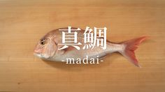 How to filet Cutlassfish Japanese Style, Japanese Food, Cooking Recipes, Pets, Projects, Fishing, Seasons, Log Projects, Japan Style