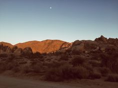 """s-un-rise: """" mermaaidy: """" Arizona & California / May 2015 """" in love with this photoset - wish I could back to AZ """" Desert Dream, Desert Life, Desert Aesthetic, Music Aesthetic, Secrets Of The Universe, Fallout New Vegas, All The Pretty Horses, Roadtrip, Monument Valley"""