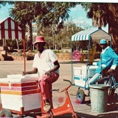 Ice cream vendors coming down our street in Masvingo, Zimbabwe! (Or Fort Victoria, Rhodesia. Zimbabwe History, Zimbabwe Africa, Durban South Africa, Moving To The Uk, All Nature, African Safari, Childhood Memories, Growing Up, Cool Pictures
