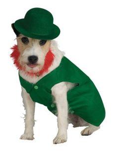Adorable Leprechaun Dog Cosume