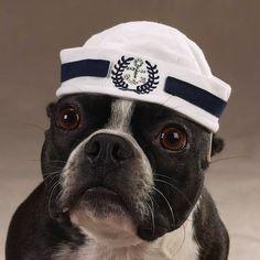 'ello sailor!