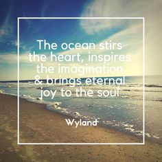 Great Wyland Quote.  The ocean can soothe the soul.  For more inspirational quotes, visit the Soul Candy Collection at myaspiringsoulfullife.com.
