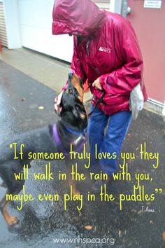 At the New Hampshire SPCA, every dog gets a walk, no matter the weather, thanks to our amazing volunteers!  #volunteer #dogwalking #volunteerism #volunteering #rain #quote #adopt #nhspca