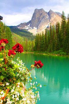 Emerald Lake in Yoho National Park, British Columbia, Canada - Travel tips - Travel tour - travel ideas Yoho National Park, Parc National, National Parks, Grand Teton National, Beautiful World, Beautiful Places, Beautiful Pictures, Beautiful Scenery, Yellowstone Nationalpark