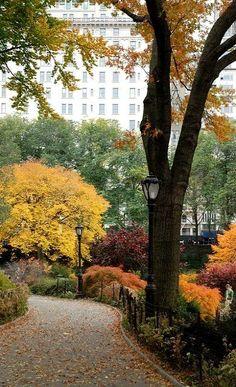 Central Park | via #BornToBeSocial - Pinterest Marketing