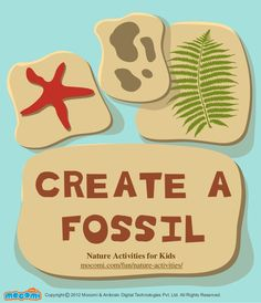 How to make Fossil: create a fossil nature activity for kids