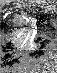 Illustration by Ida Rentoul Outhwaite. ZZ+She+saw+a+little+witch+dance+past. Art And Illustration, Vintage Illustrations, Fantasy Kunst, Fantasy Art, Potnia Theron, Images Esthétiques, Witches Dance, Art Vintage, Mystique