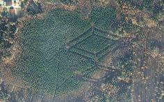В лесах Смоленской области обнаружили странные символы » Новости мира
