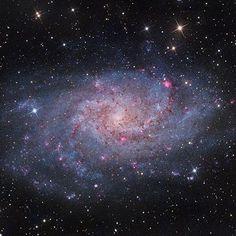 390 отметок «Нравится», 2 комментариев — Taner Göçer (@astro_taner) в Instagram: «M33 Trianglum Galaxy.. by Terry Hannock»