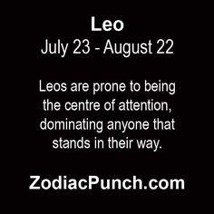 leo1 Leo And Scorpio Relationship, Scorpio Relationships, Relationship Meaning, Leo And Sagittarius Compatibility, Gemini And Leo, Leo Zodiac, Zodiac Signs, Leo Facts, In A Nutshell
