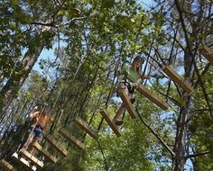 1000 images about camp callaway on pinterest camps garden ideas and pine for Callaway gardens treetop adventure