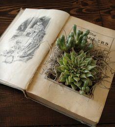 Leuk idee om kado te geven (of zelf te houden), een oud boek omgetoverd tot plantenbakje.